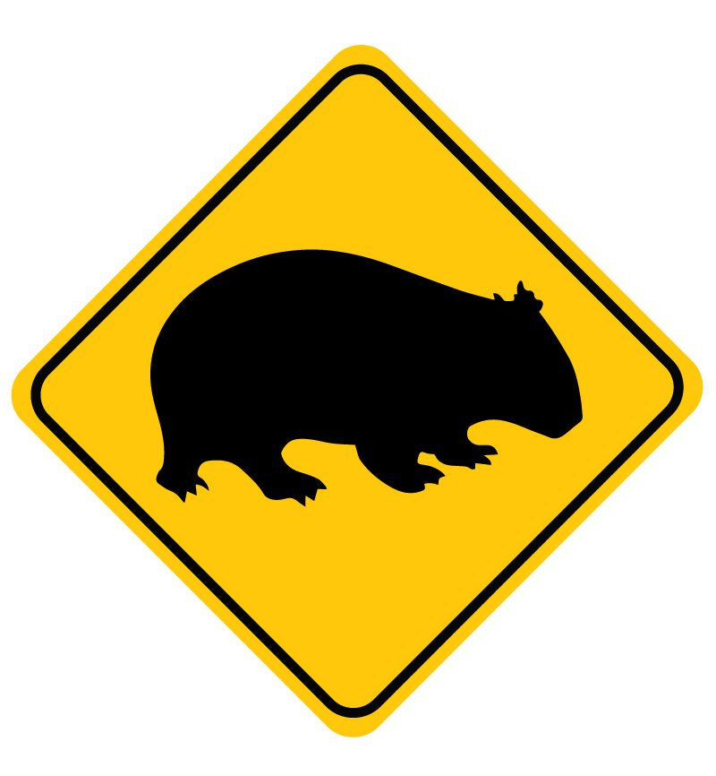 wombat sign wall decal